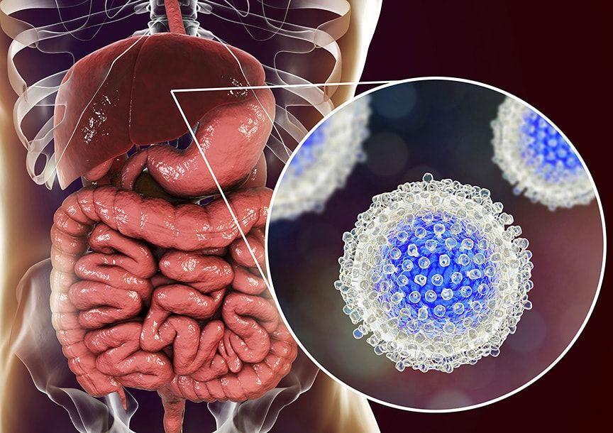 Вирални хепатити