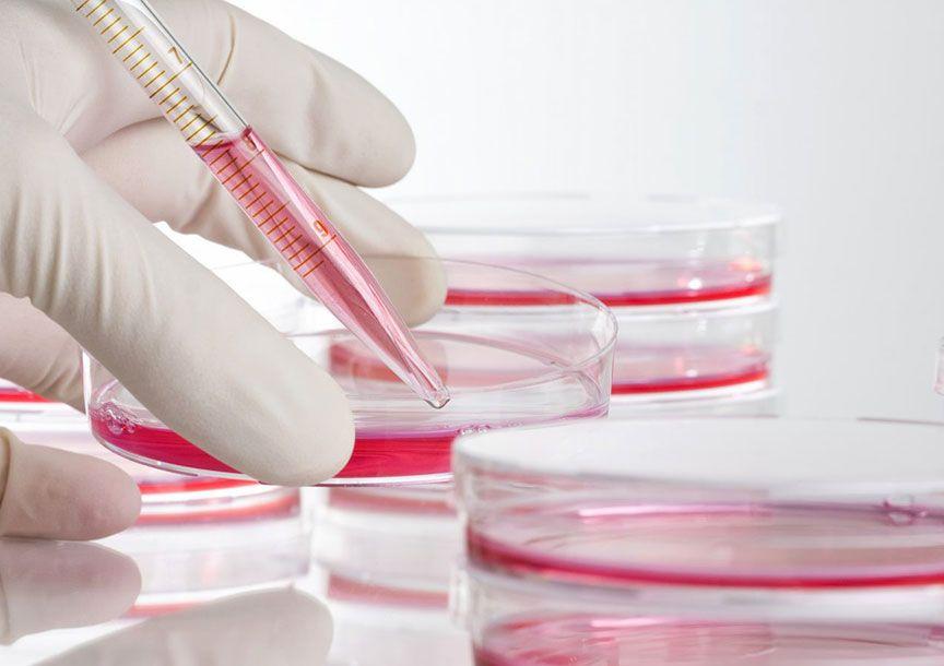 Какво представлява регенеративната медицина?