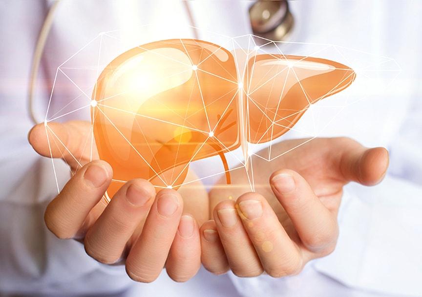 Какво представлява трансплантацията на черен дроб?